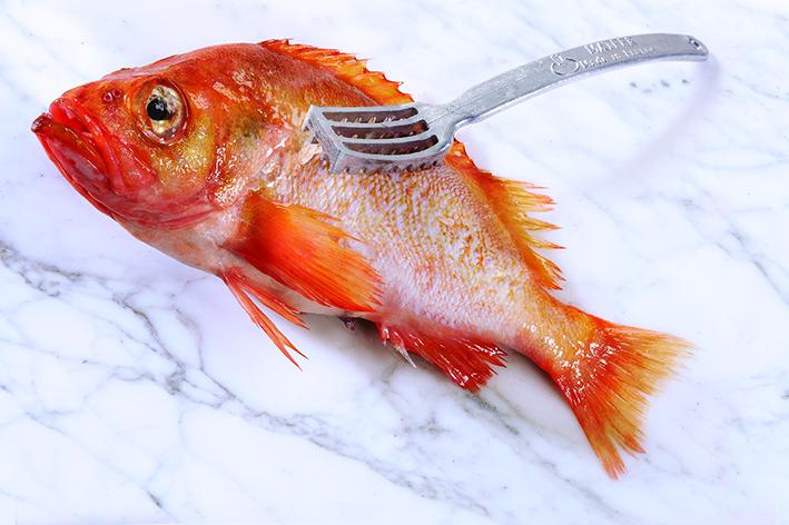 rybochistka